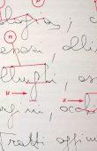 BUBASTIS - Grafologia per aziende
