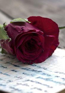 BUBASTIS - Per te che scrivi